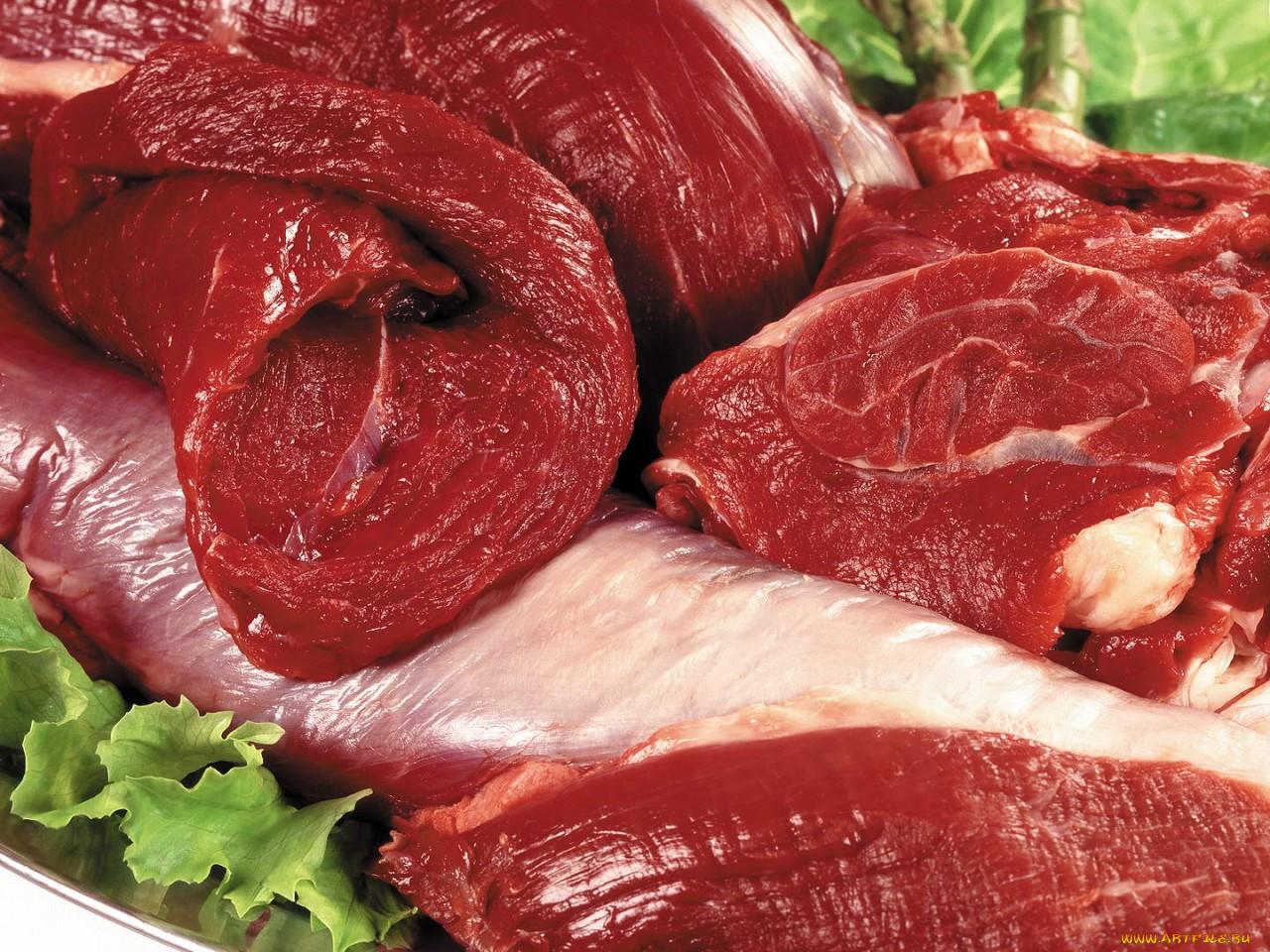 Засольщики мяса и мясопродуктов фото 2